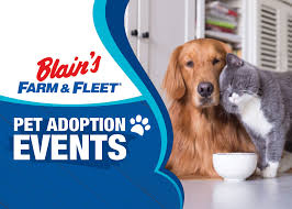 Blain's Farm & Fleet Announces VIP PetCare Now Available at Select Store Locations | Live Media