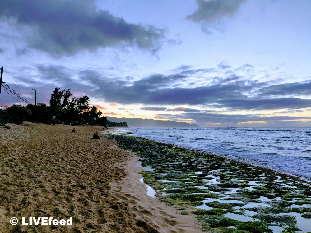 Laniakea Beach, also known as the Turtle Beach of the North Shore / Photo credit: LIVEfeed