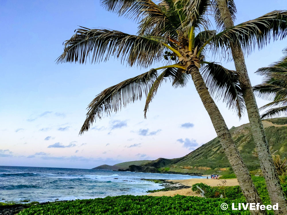 Ocean view from Sandy Beach, Honolulu, HI / Photo credit: LIVEfeed